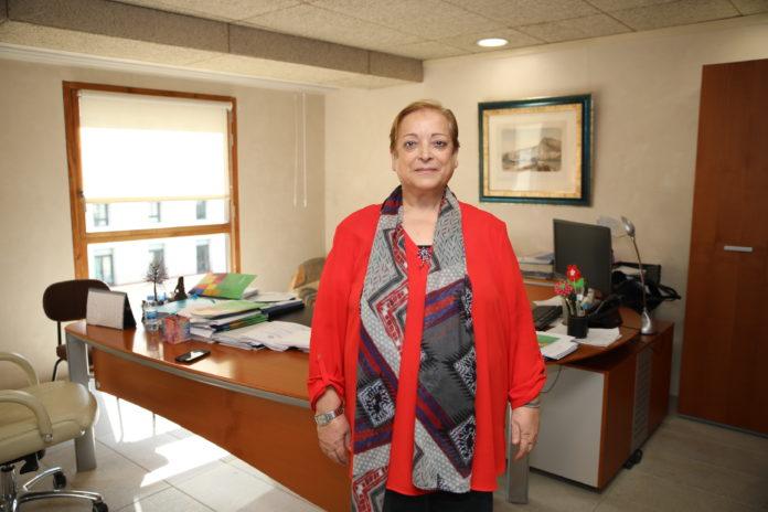 Programa de Desarrollo Diario de Alicante