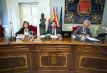 primer pleno Diario de Alicante
