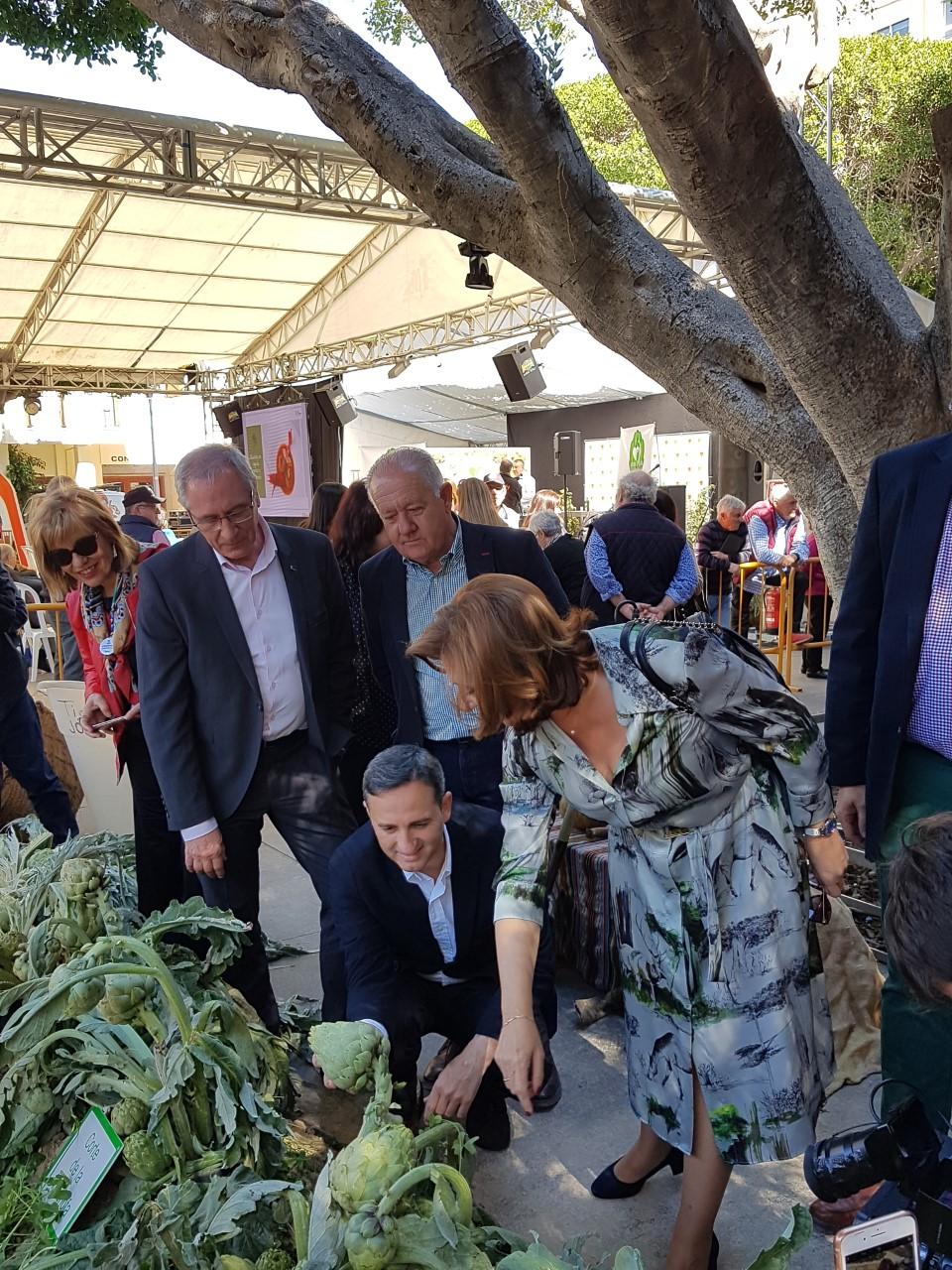 César Sánchez cogiendo una alcachofa mientras María Gómez le hace un comentario en el huerto de la Peña Huertana/ Alex Ferrer