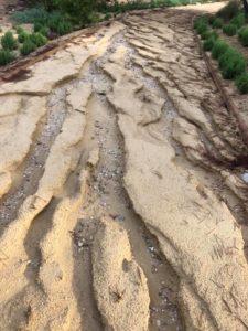 Destrozos en Rojales por las lluvias torrenciales de agosto 2019 (Foto cedida por PADER)