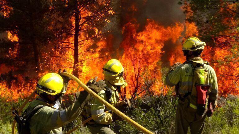 Bomberos forestales de Alicante (Imagen: EMAD)