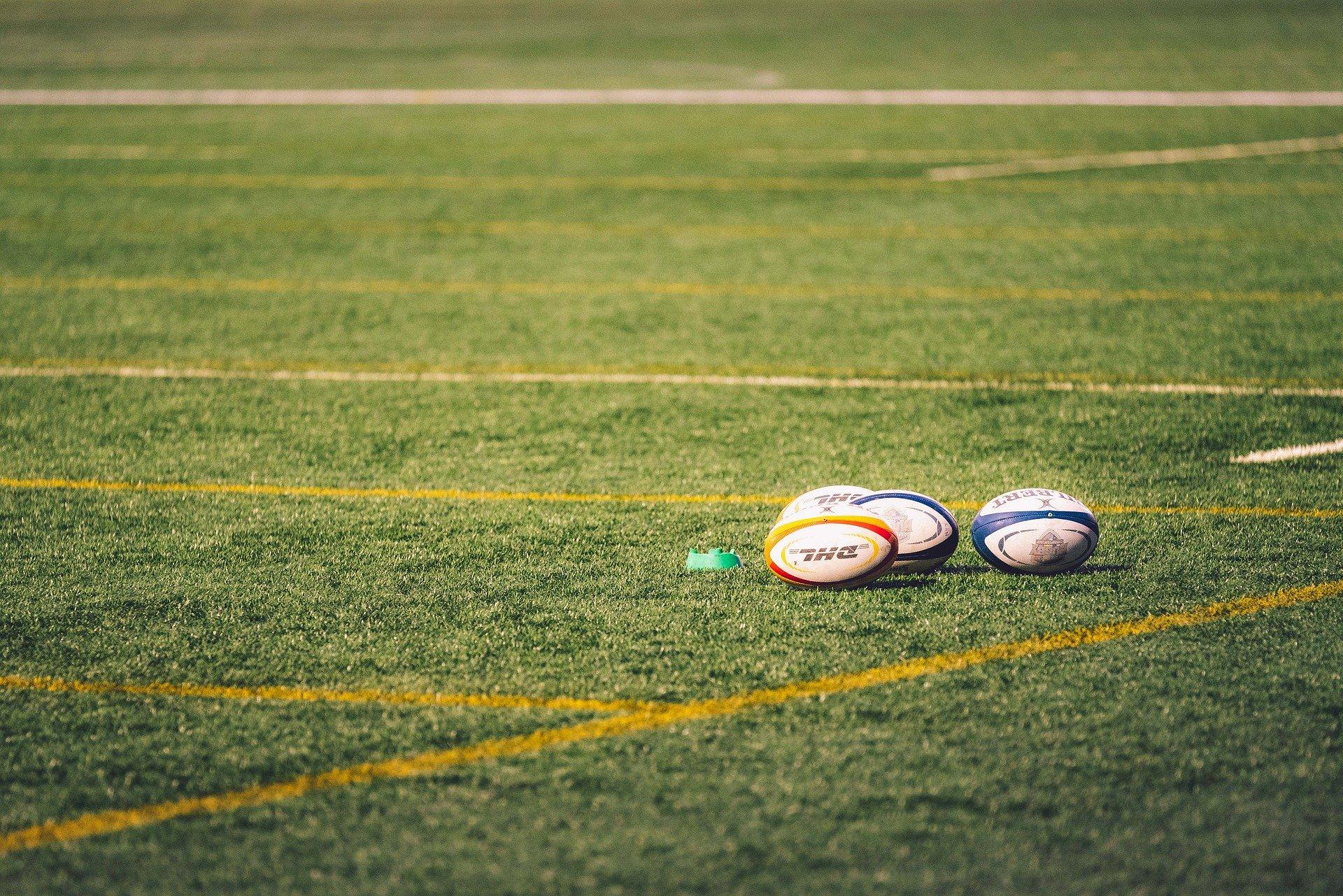 Pelotas de rugby en el cesped
