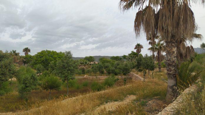 Paraje natural El Campello