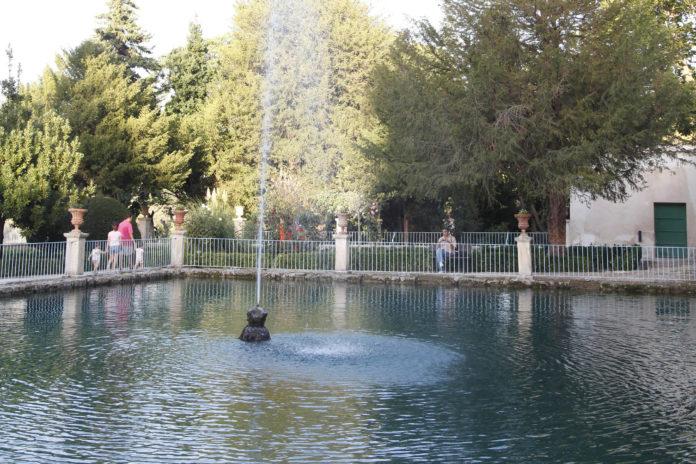 Jardín Todos los Santos Penaguila